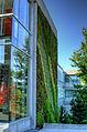 Green-Wall-Blusson-Hall-SFU-Burnaby-British-Columbia-Canada-02-A.jpg
