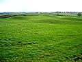 Green Rolling Field Near Kirkton - geograph.org.uk - 354739.jpg