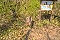 Grenzsteinweg Naturschutzgebiet Wolferskopf 04.jpg