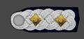 HH-SS-Standartenfuhrer-Shoulder Strap.png