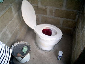 A locally-made toilet seat in Haiti. Note the ...
