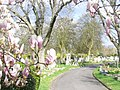 Hammersmith Cemetery - geograph.org.uk - 1227691.jpg