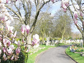 Mortlake Cemetery Cemetery in west London