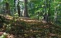 Happy wood - panoramio.jpg