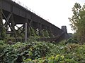 Harahan Bridge from Arkansas, with Kudzu - panoramio.jpg