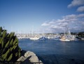 Harbor, Monterey, California LCCN2011630971.tif