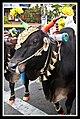 Hare Krishna Christmas Parade Penang-03 (5328725604).jpg