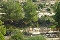 Harei Yehuda, Israel - panoramio - Mujaddara.jpg