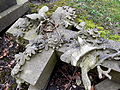Harlow Hill Cemetery 025.jpg