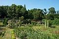 Harris Garden Walled Garden.JPG
