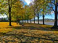 Harris Riverfront in the Fall.jpg