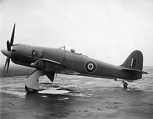 Hawker Sea Fury FB11 in November 1947.jpg