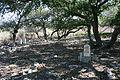 Hawsha-Kayasir cemetery.JPG