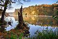 Herbststimmung am Lütauer See.jpg