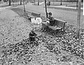 Herfststemming in Amsterdam. In het Vondelpark, Bestanddeelnr 913-1151.jpg