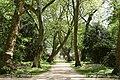 Herten - Schlosspark 03 ies.jpg