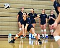 High school volleyball 2734 (9560555853).jpg