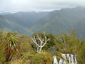 Heaphy Track - The view from the highest point of the track