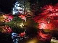 Hirosaki Park in autumn - panoramio.jpg