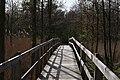 Holzbrücke im Nationalpark Vorpommersche Boddenlandschaft.jpg