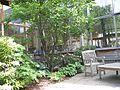 Honan-allston courtyard.jpg