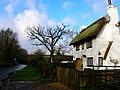 Honeysuckle Cottage, Butchers Lane, Three Oaks - geograph.org.uk - 344354.jpg