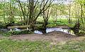 Horn-Bad Meinberg - 2015-05-10 - LIP-028 Silberbachtal mit Ziegenberg (23).jpg