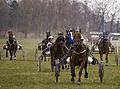 Horse Races 008 (8606928796).jpg