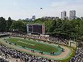 Horse racing @ Tokyo Race Course @ Fuchu (14121252504).jpg