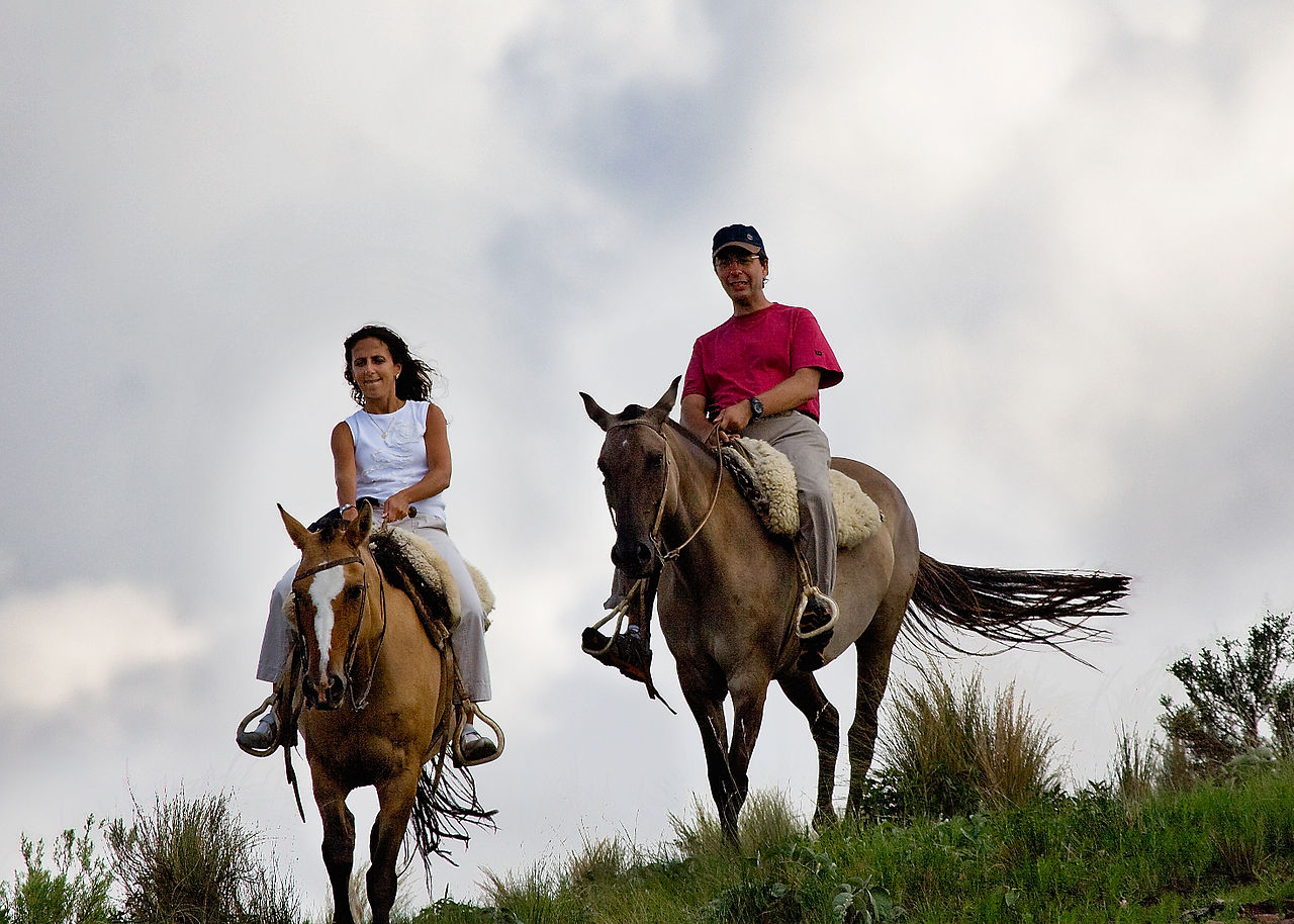 Horseback Riding Bed And Breakfast In Georgia