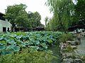 Humble Administrator's Garden, Suzhou, China (2016-08-20) - 11.jpg