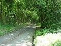 Hurstwood Lane - geograph.org.uk - 183505.jpg