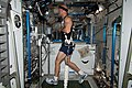 ISS-36 Luca Parmitano exercises on COLBERT.jpg