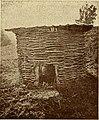 "Image from page 40 of ""Carniola - izvestja Muzejskega drustva za Kranjsko = Mitteilungen des Museal-Vereines für Krain = comptes-rendus de l'Association du Musée de Carniole - nova vrsta"" (1910) (14767174234).jpg"