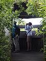 In de vogelkijkhut. Schiermonnikoog.JPG