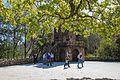 In the park of Quinta da Regaleira (34140490514).jpg