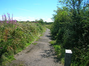 Ardeer, North Ayrshire - The old Inch Road that ran to Misk and Bog Farms.