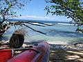 Indonesia (New Guinea Island)(31).jpg