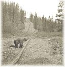 Inspecting the Canol pipeline.jpg
