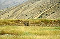 Iran - Fars - An old wall in Bishapour - panoramio.jpg