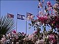 Israel by Dainis Matisons (3325457582).jpg