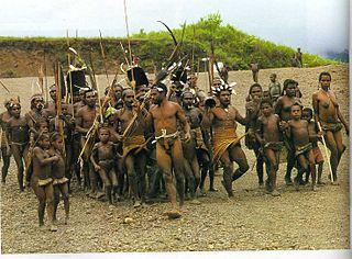 Indigenous people of New Guinea indigenous inhabitants of New Guinea
