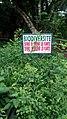 Jardin Botanique et Zoologique de l'Université d'Abomey-Calavi ( Flore ) 48.jpg