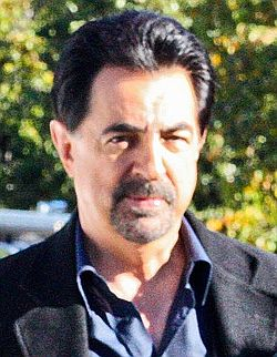 Joe Mantegna small.jpg