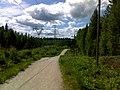 Jogging paths in Hervanta - panoramio (1).jpg