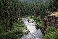 John Day River, Umatilla National Forest (36070223403).jpg