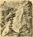 Journal of horticulture, cottage gardener and country gentlemen (1871) (14577108239).jpg