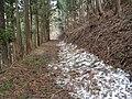 Kamishiro, Hakuba, Kitaazumi District, Nagano Prefecture 399-9211, Japan - panoramio (32).jpg