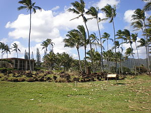 Wailua River State Park - Image: Kauai Heiau Hikinaakala far