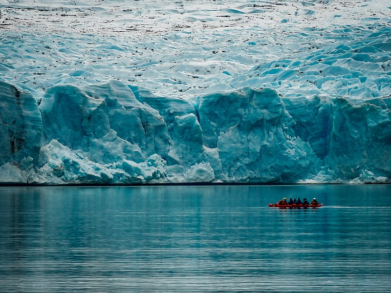 File:Kayakistas en Glaciar Grey.jpg